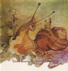 ilustrati elena boariu
